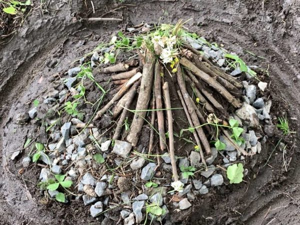 Nature Art (Andy Goldsworthy)